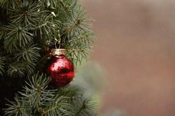 Collectes des sapins de Noël - Du 12 au 15 janvier